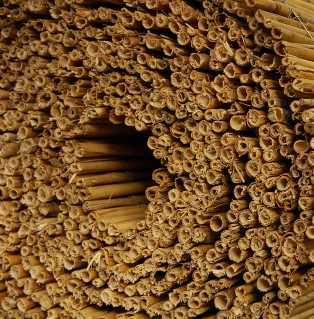 Rietmatten bijenhotel